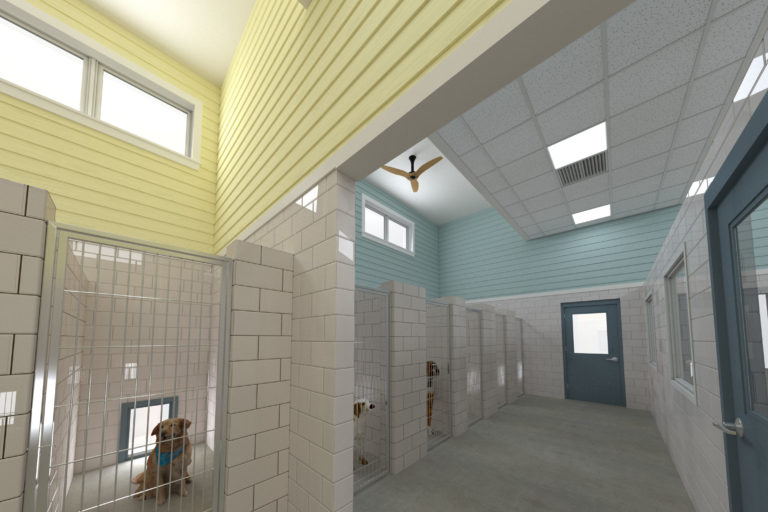 Providence Animal Center dogs in kennel
