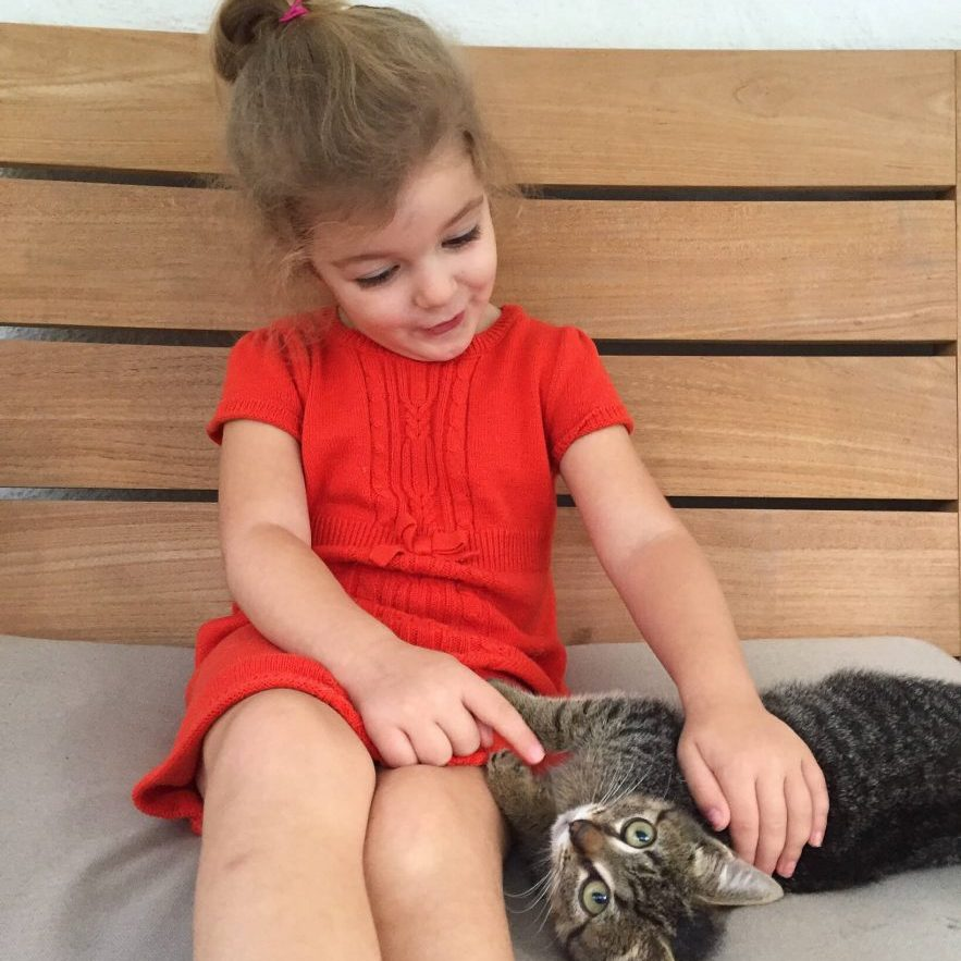 Providence Animal Center little girl with a cat