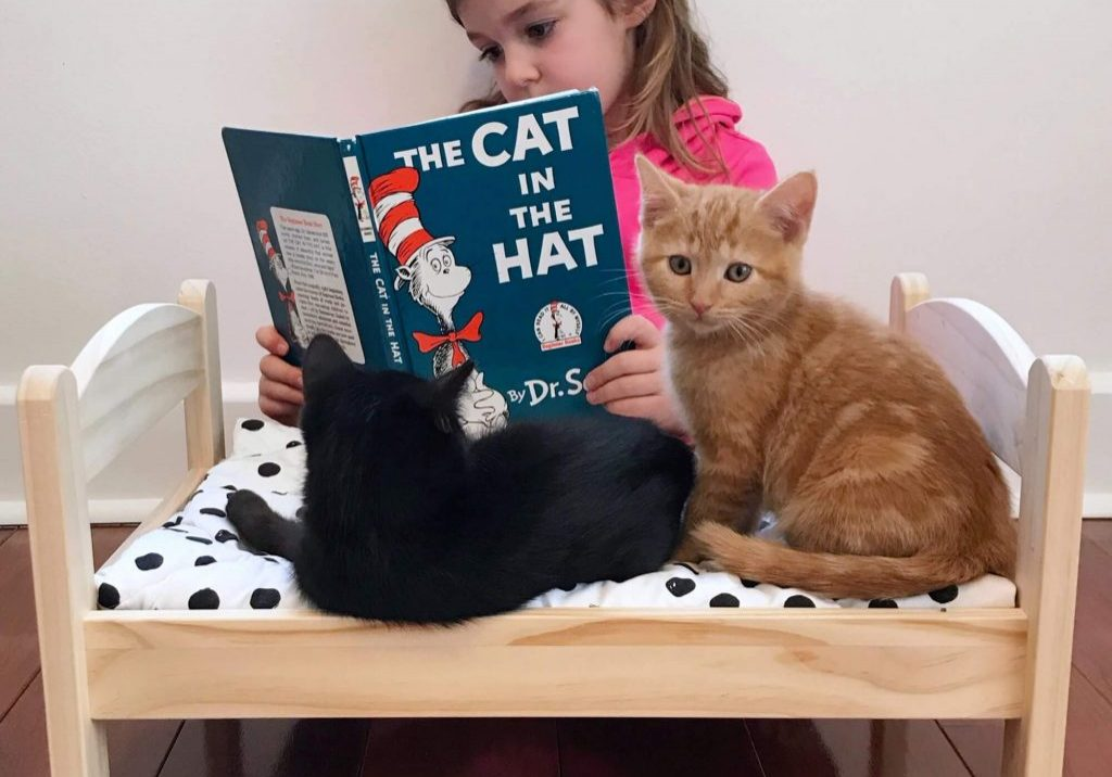 Providence Animal Center smarty paws - little girl reading a book