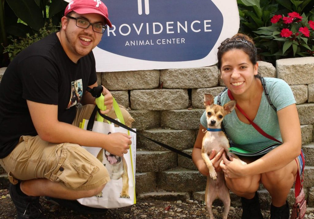 Providence Animal Center how to adopt